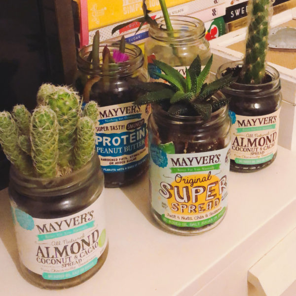 Mayver's Jars Plants